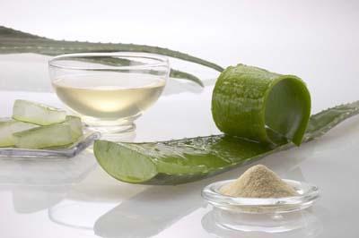 curso de cosmética natural en madrid - aloe vera