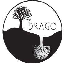 asociación cultural en madrid - proyecto drago