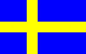 curso de sueco en madrid - bandera